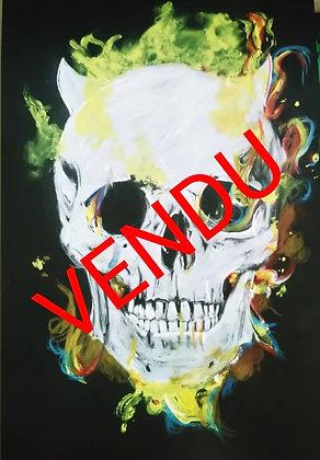 PORTRAIT   Skull Crâne flammes colorées