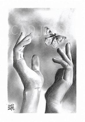 DESSIN | Petit papillon, vole !