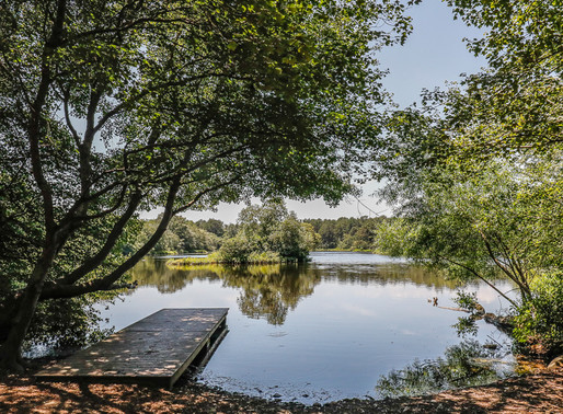 4 Places To Hike In The Hamptons This Fall