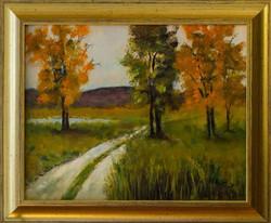 Rural Georgia in the Fall
