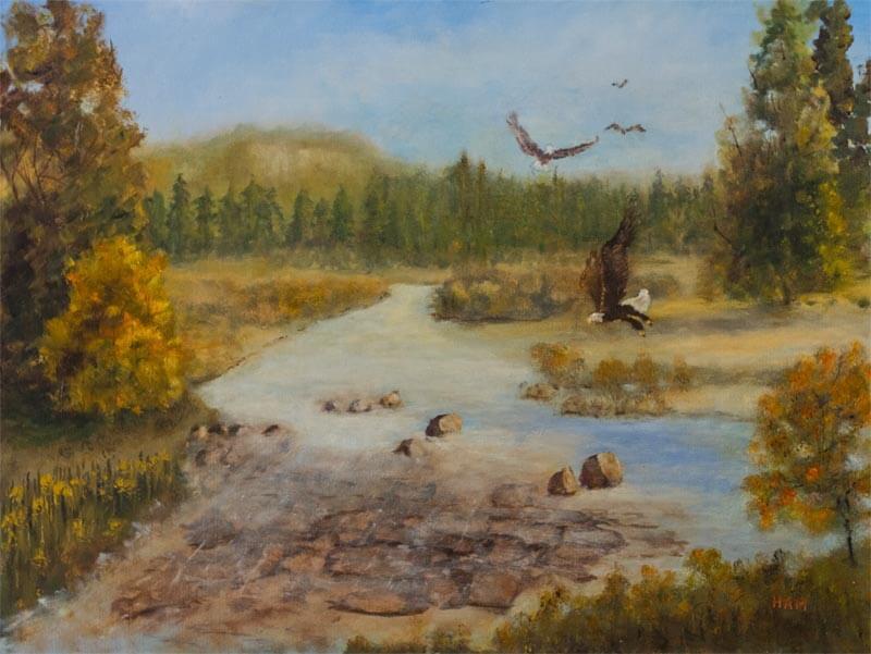 North Georgia Trout Stream