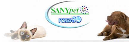 Forza10-Contenu_1.png
