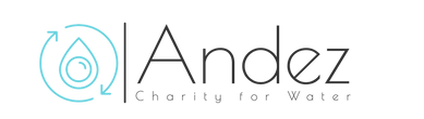 Logo Andez-transparent medium.png