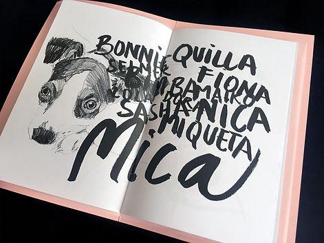 MICA_RaquelLabrador3.jpg