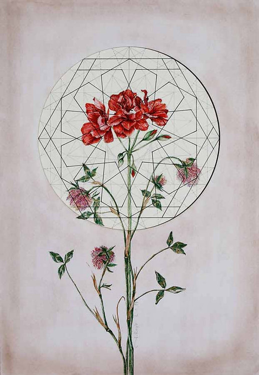 Roya Najafzadeh Asl | Geometry of Nature | Mixed media on cardboard |35x50cm