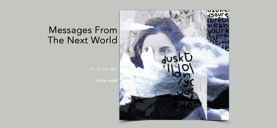 Sonja Janjic-Messages from the next world.png