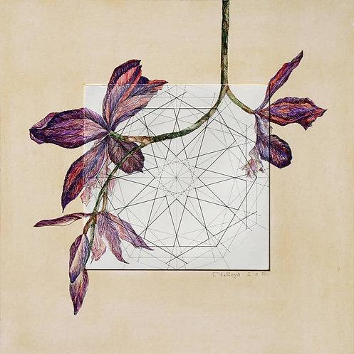 Roya Najafzadeh Asl | Geometry of Nature | Mixed media on cardboard | 42x42cm