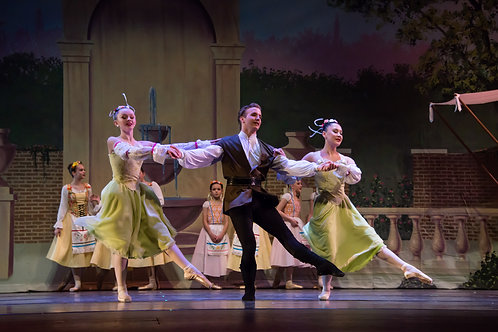 Coppelia Tuition: Gentlemen Commitment Fee