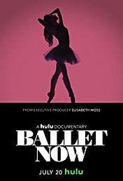 Ballet Now Poster.jpg
