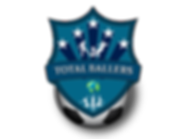 Total Ballers Logo