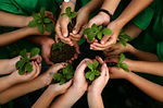 educaa_a_o_ambiental_1.jpg