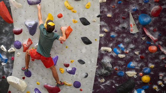 Take a Visit to the Most Popular Gyms in Sacramento