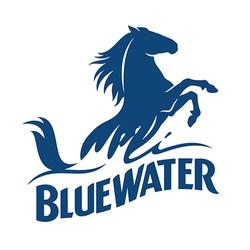 Bluewater_Logo_BLUEBERRY_RGB.jpg