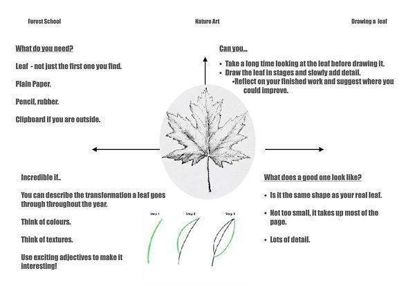 Drawing leaf.jpg