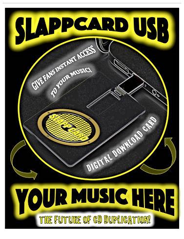 SLAPP USB.jpg