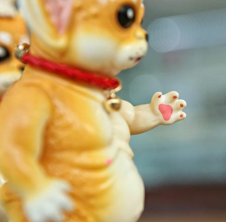 """SHIBA DOG"" Crukii (Detail Pic of Paws)"