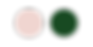 rose e verde-01.png