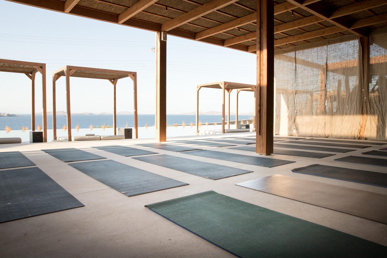 Yoga Shala