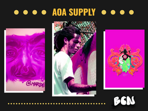 Boston's Grassroots Graff Shop: AOA Supply Collective