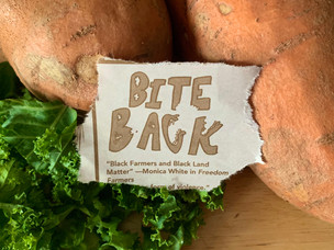 Bite Back: These Organizations Are Fighting Against Inequality Through Food