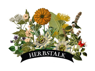 Herbstalk Offers City-Dwellers A Path To Connect With Nature And Holistic Living