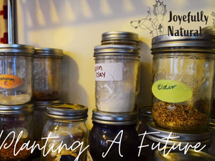 Planting a Future: Self Care & Herbalism
