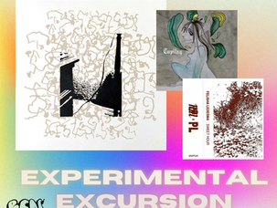 Experimental Excursion: January Finds