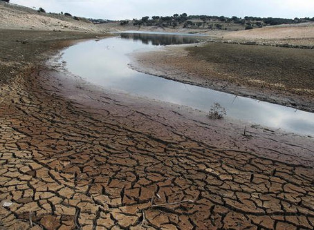 Cambio Climático:Amenaza Inminente Para la Salud