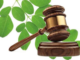 Legislación Verde: ¿Eficiente?