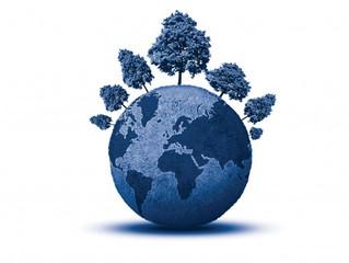 Gobierno, Ecología y Consumo Responsable