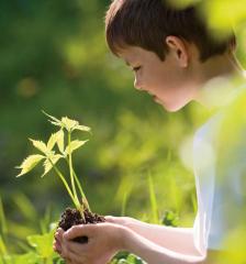 Actitudes, Educación y Medio Ambiente