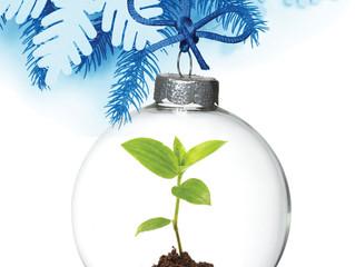 Una Fiesta Sustentable, Un Consumo Responsable