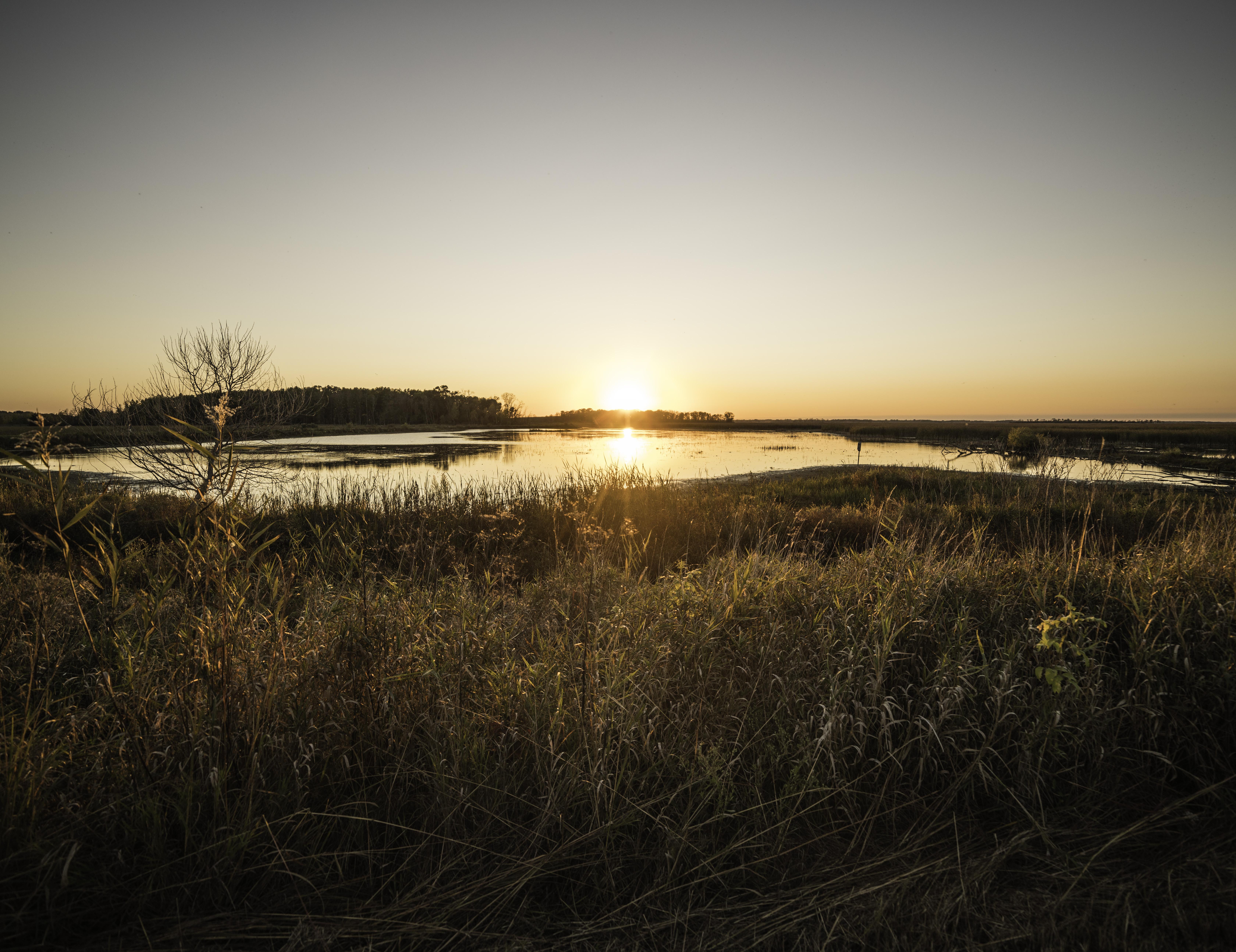 sunset-landscape-over-horicon-marsh