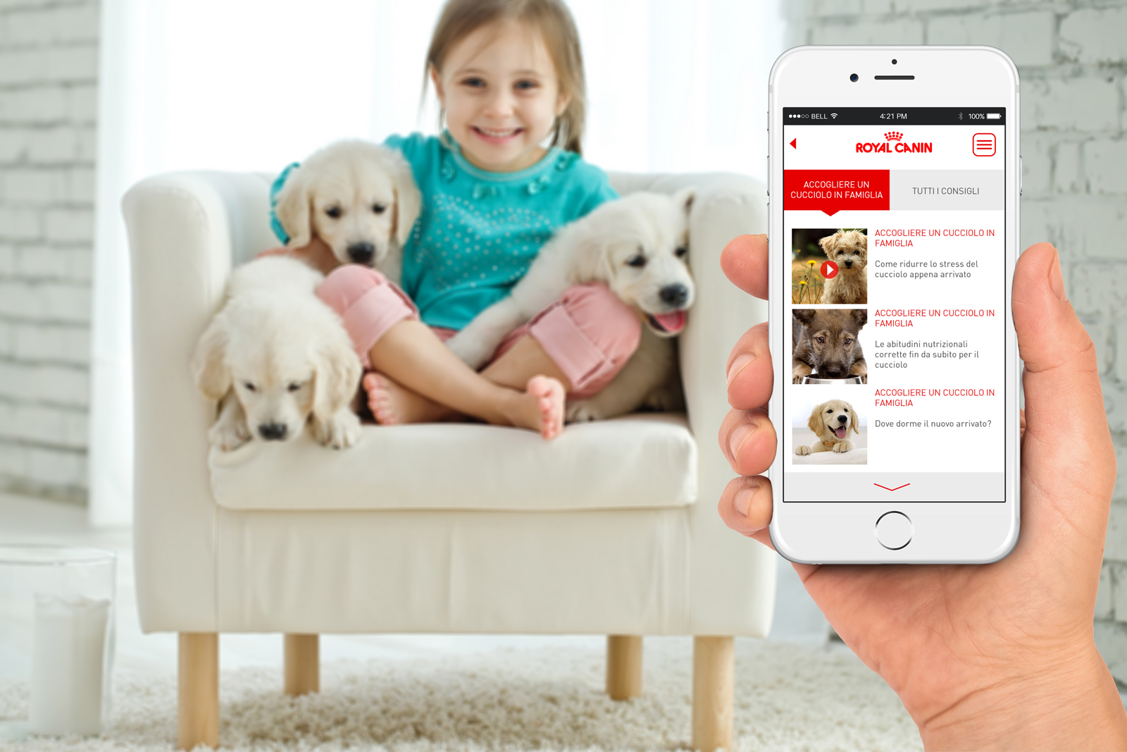 Royal-Canin-[-App-Video-]