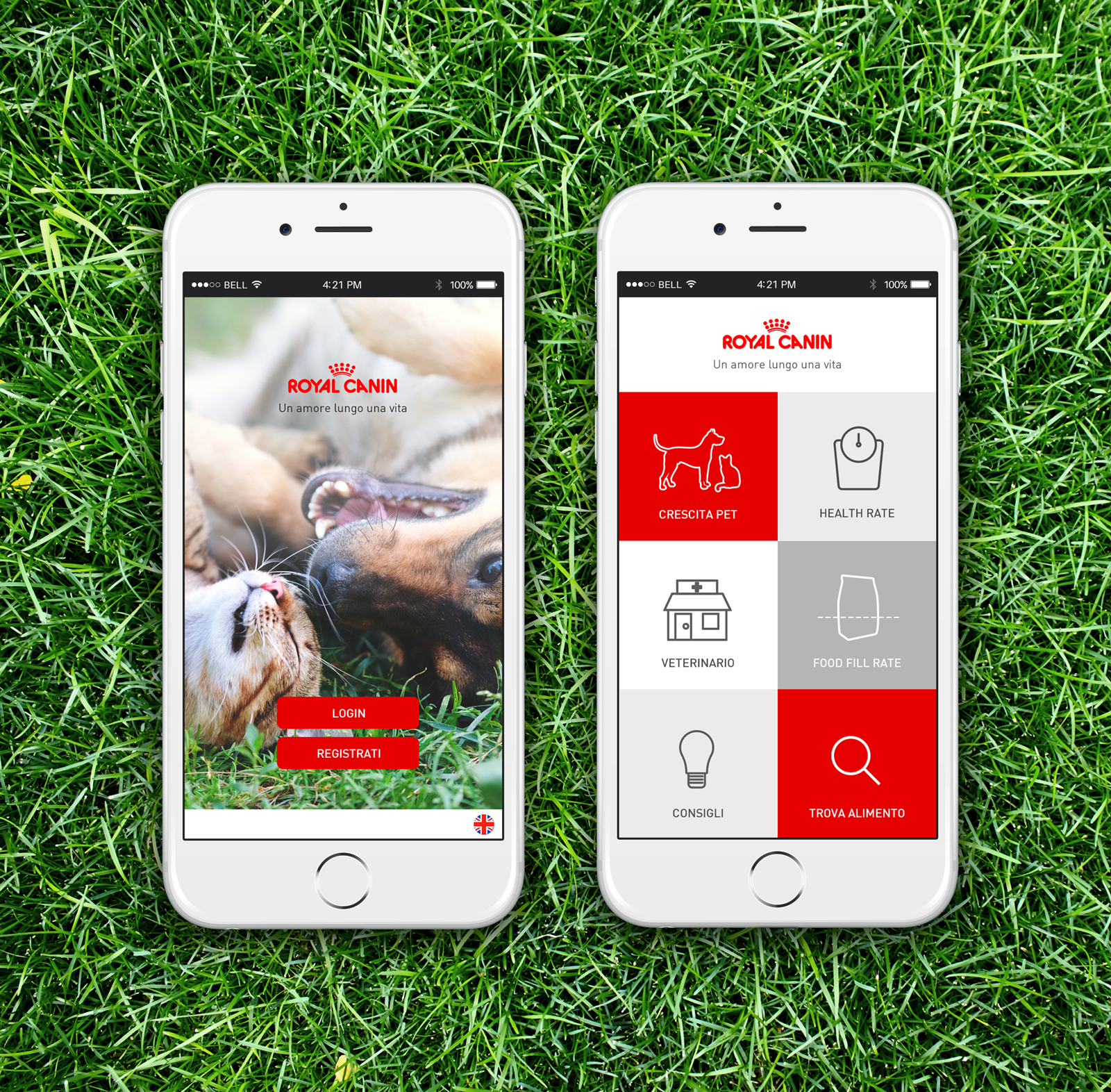 Royal-Canin-[-App-Home-]