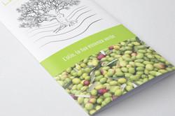 brochure closeup