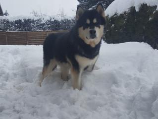 Cool de la neige!!!