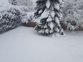 Cool ! De la neige!!!