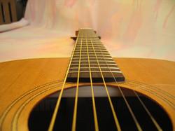 Guitar Alex 020