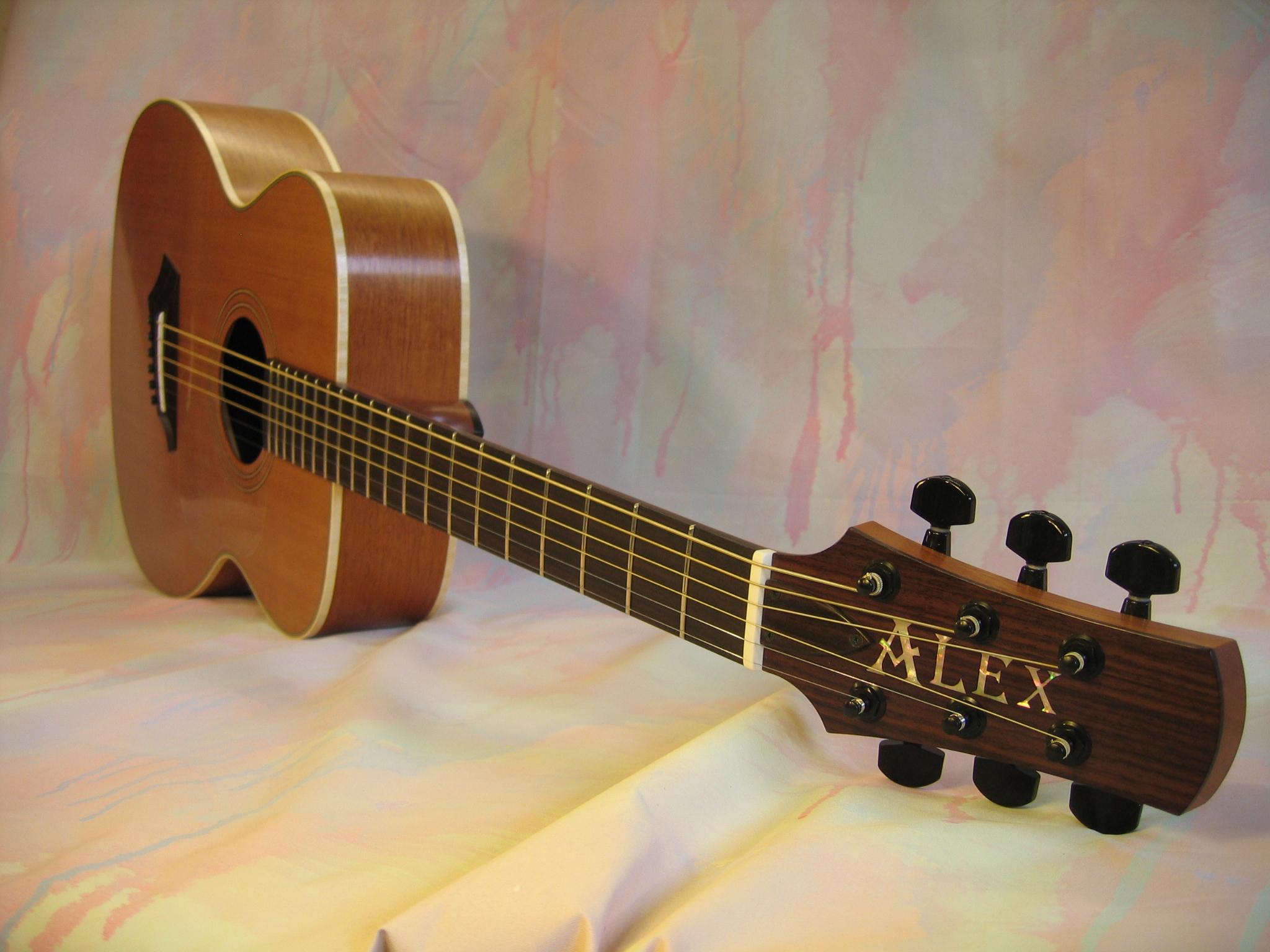Guitar Alex 017