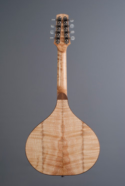 RippledMandolin02