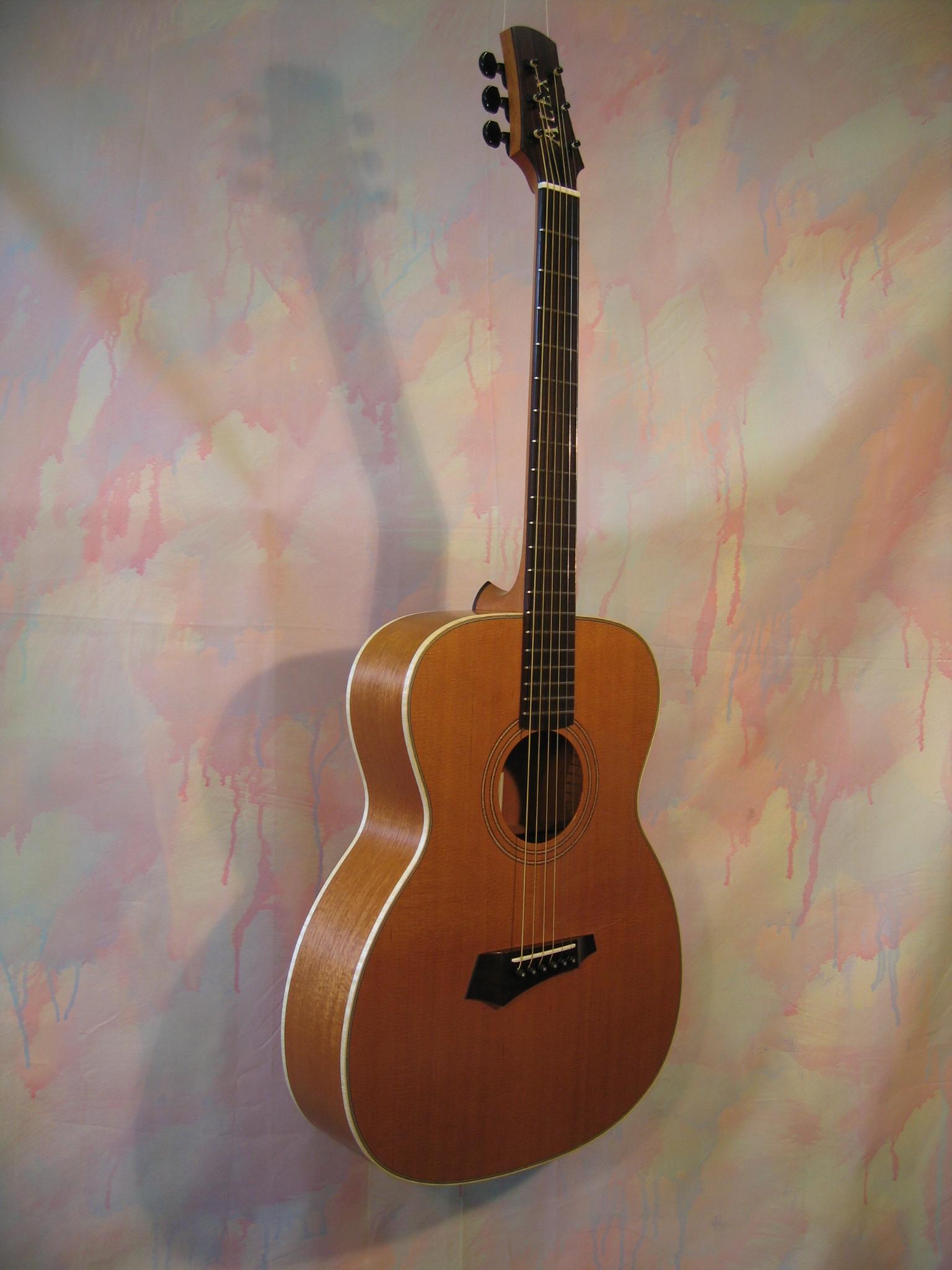 Guitar Alex 003