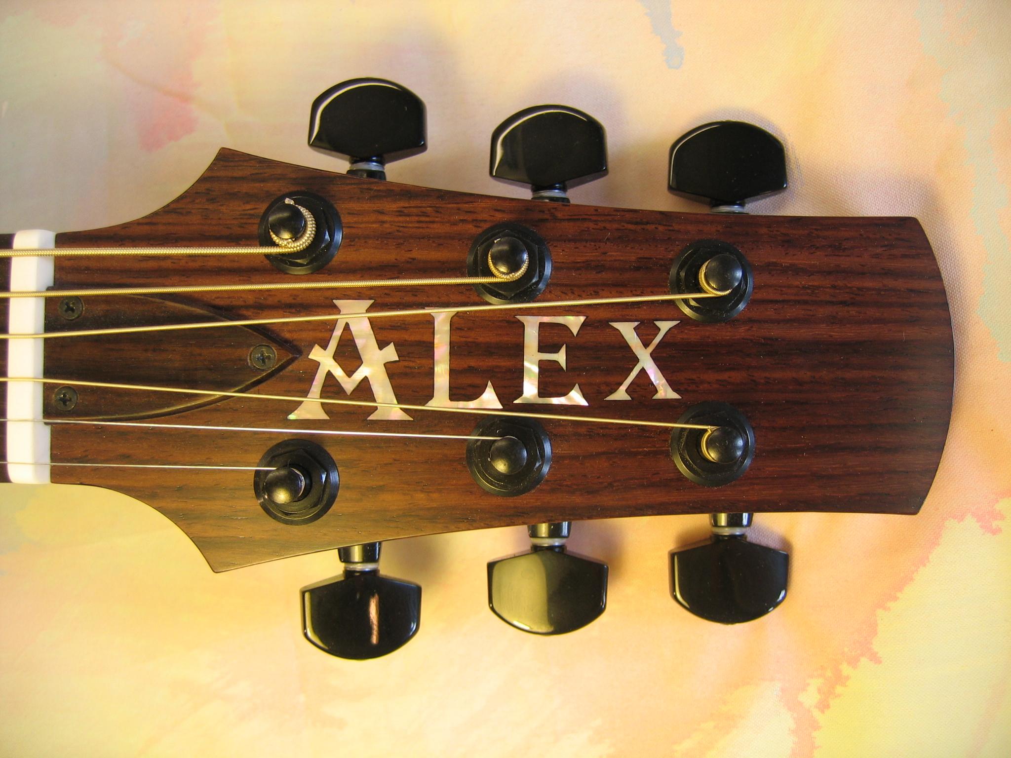 Guitar Alex 013