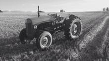 Spotlight on Lothian Lavender's Vintage Tractor
