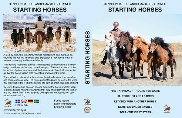 Starting Horses.jpg