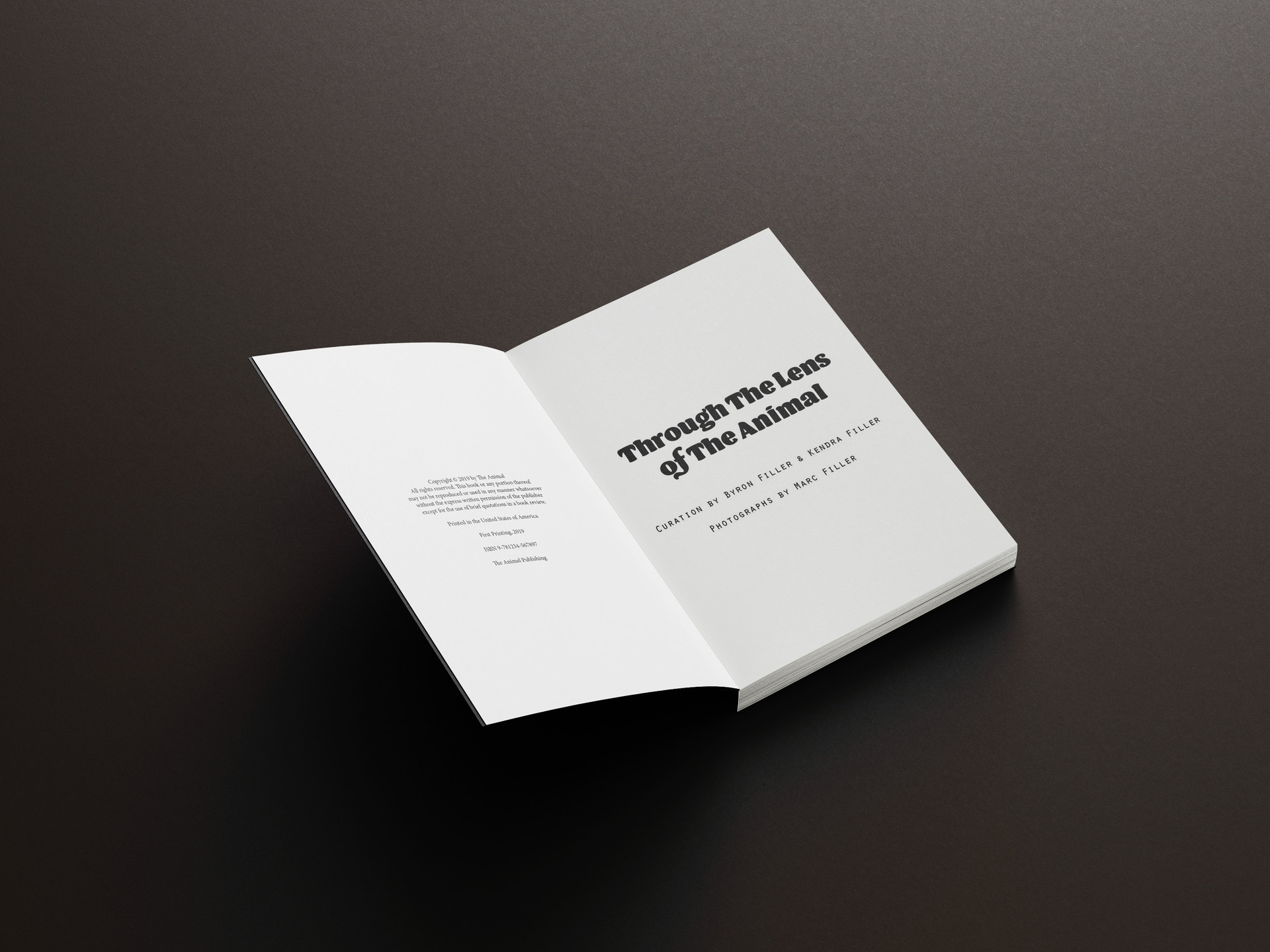 Free_Book_Mockup_3.jpg