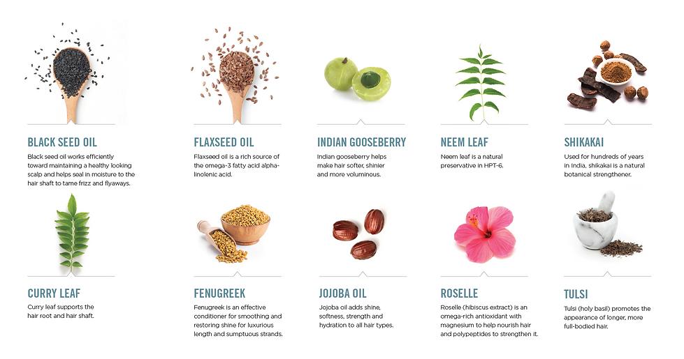 reveal-ingredients.PNG