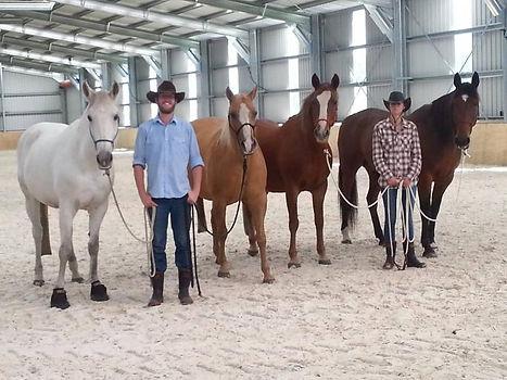 salta-horses-team-development-horse-team