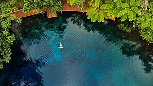 woman-floating-in-tree-fern-pool.jpg