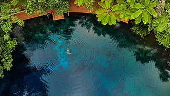 woman-floating-in-tree-fern-pool.jpg